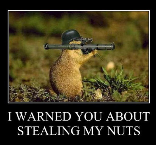 warned-you-about-stealing-my-nuts-funny-demotivational-posters-pics