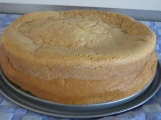 basic-sponge-cake-recipe